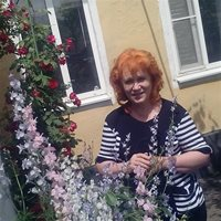 Елена Николаевна, Домработница, Москва,Грайвороново квартал 90А, Текстильщики